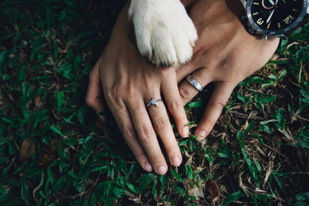 Tu mascota: Hazlo co-protagonista de tu boda